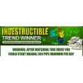 Indestructible Trend Winner with CPM Silver Yearbook